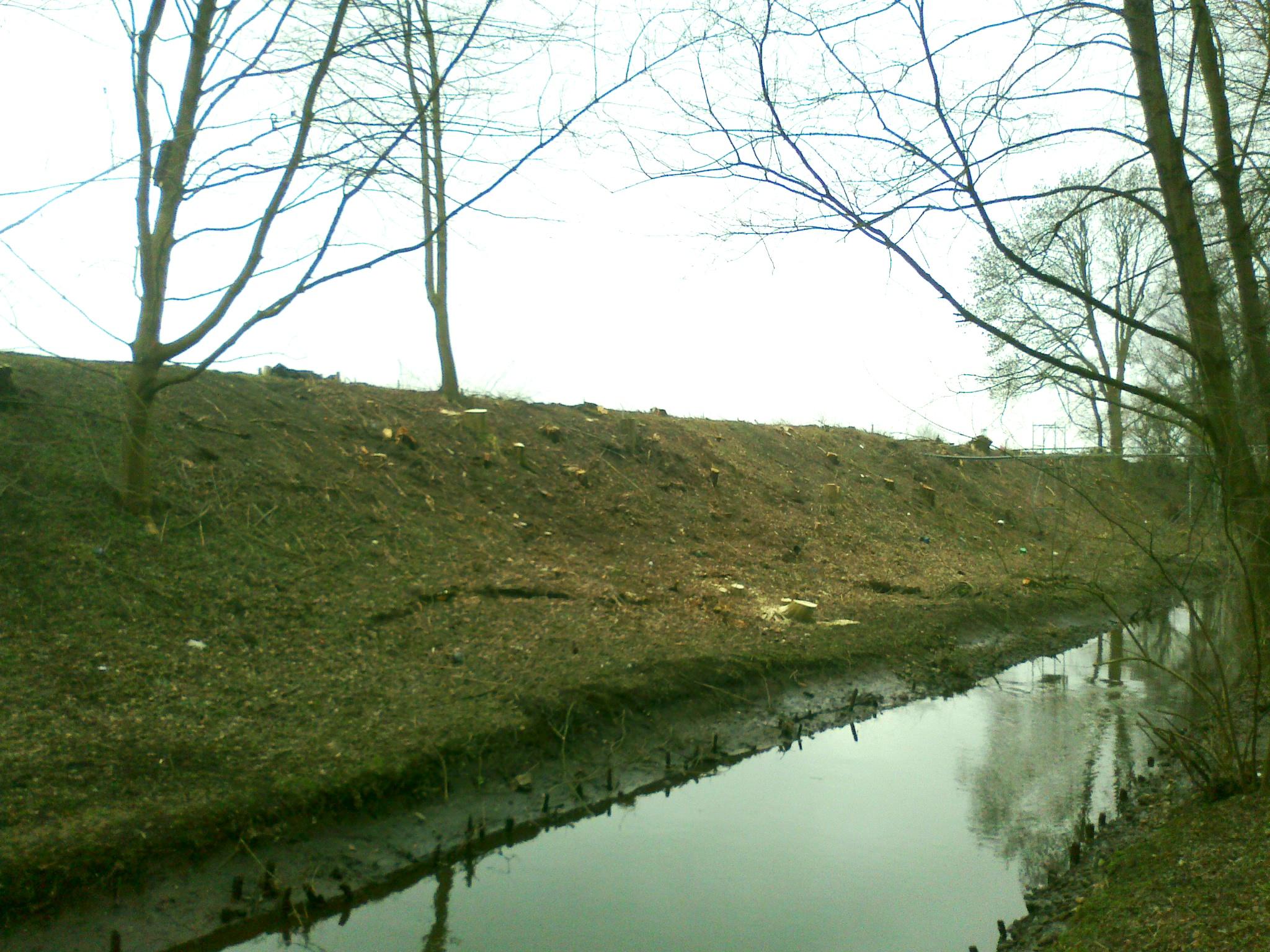 März 2016 Tarpenbek-Ufer kahlgeschlagen