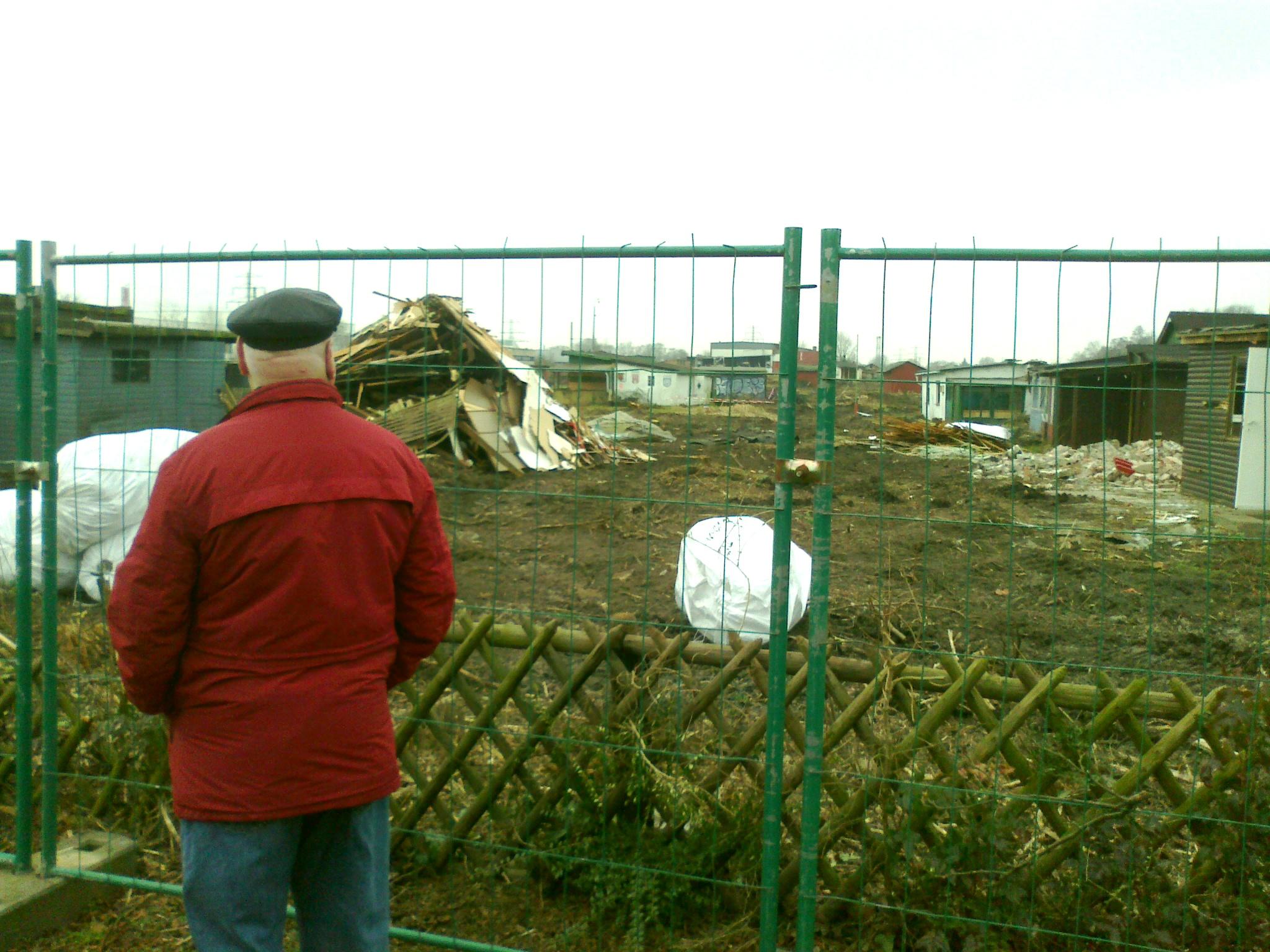 März 2016 Zerstörte Gärten an der Tarpenbek